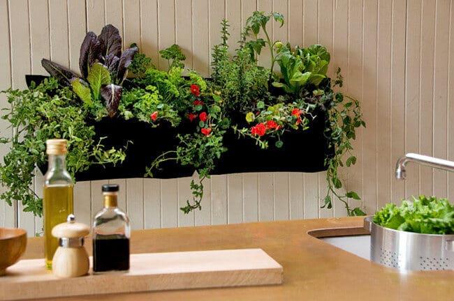 apartment-gardening-supplies-7561546