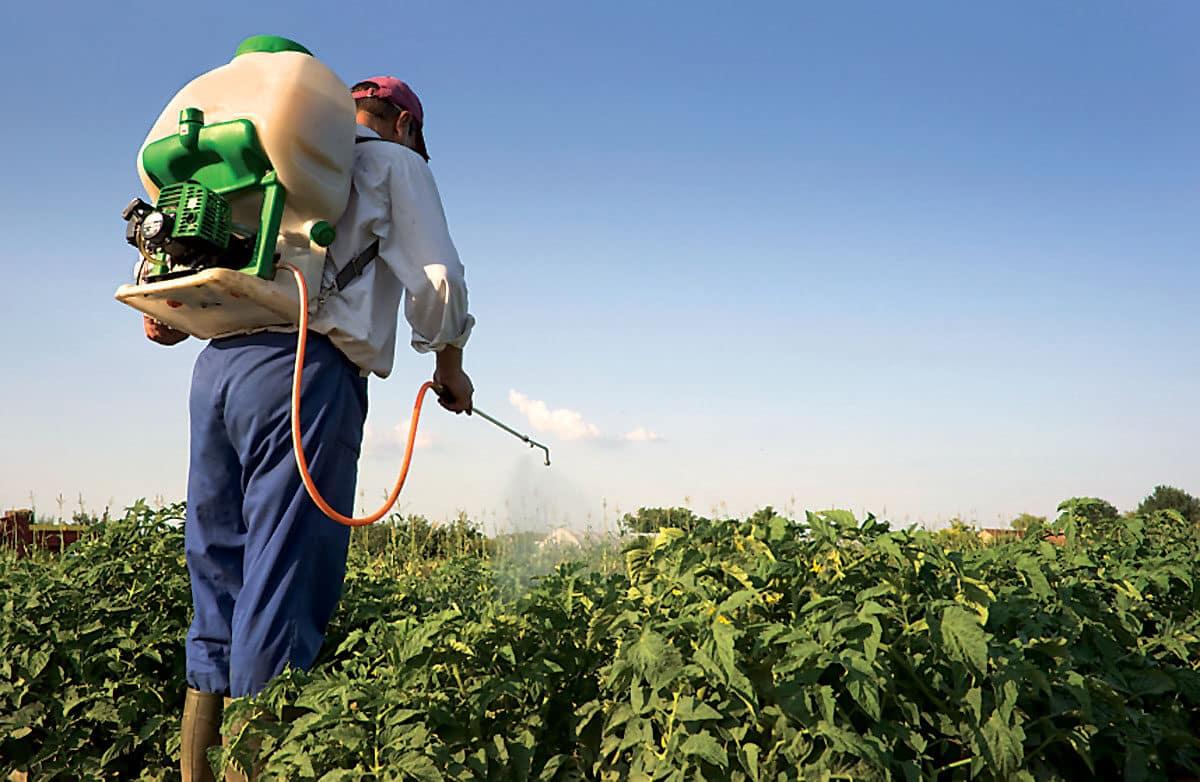pesticides-3311707