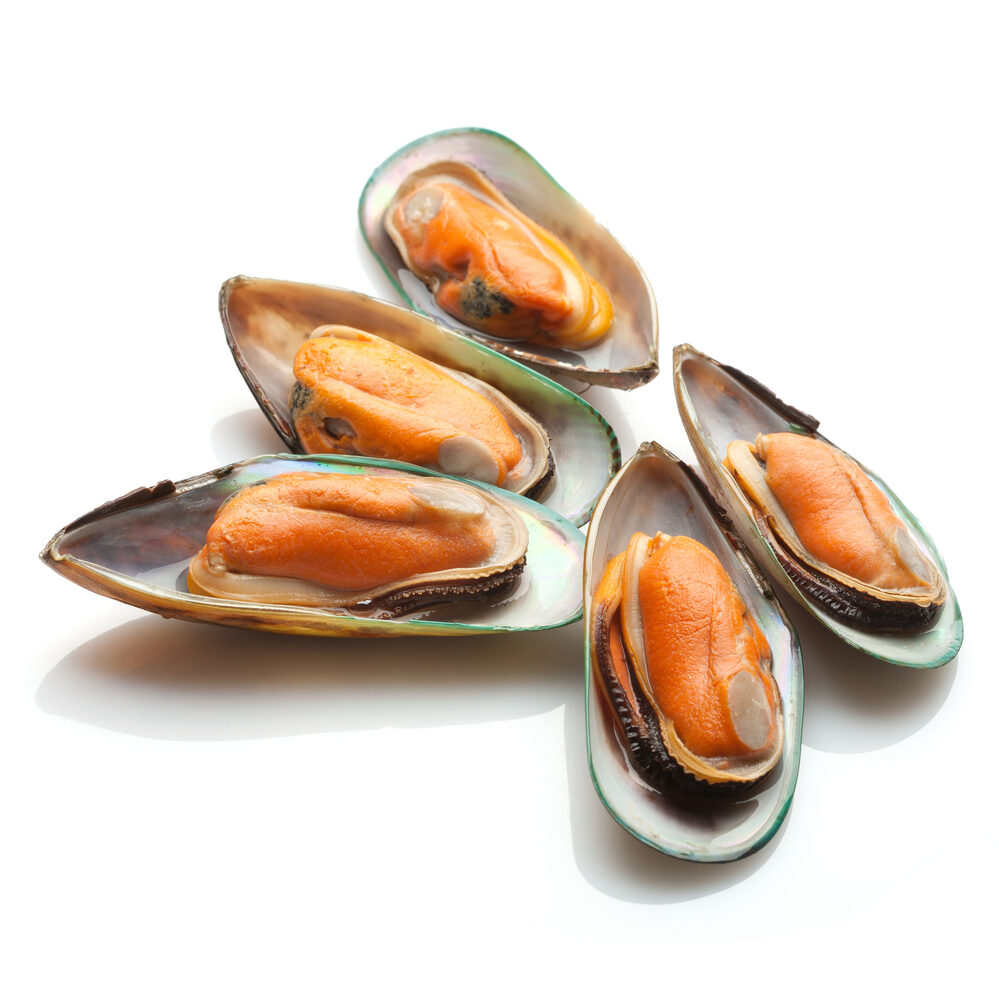 mussels1-1899904
