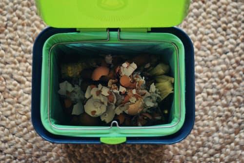 composting-kitchen-scraps-9311498