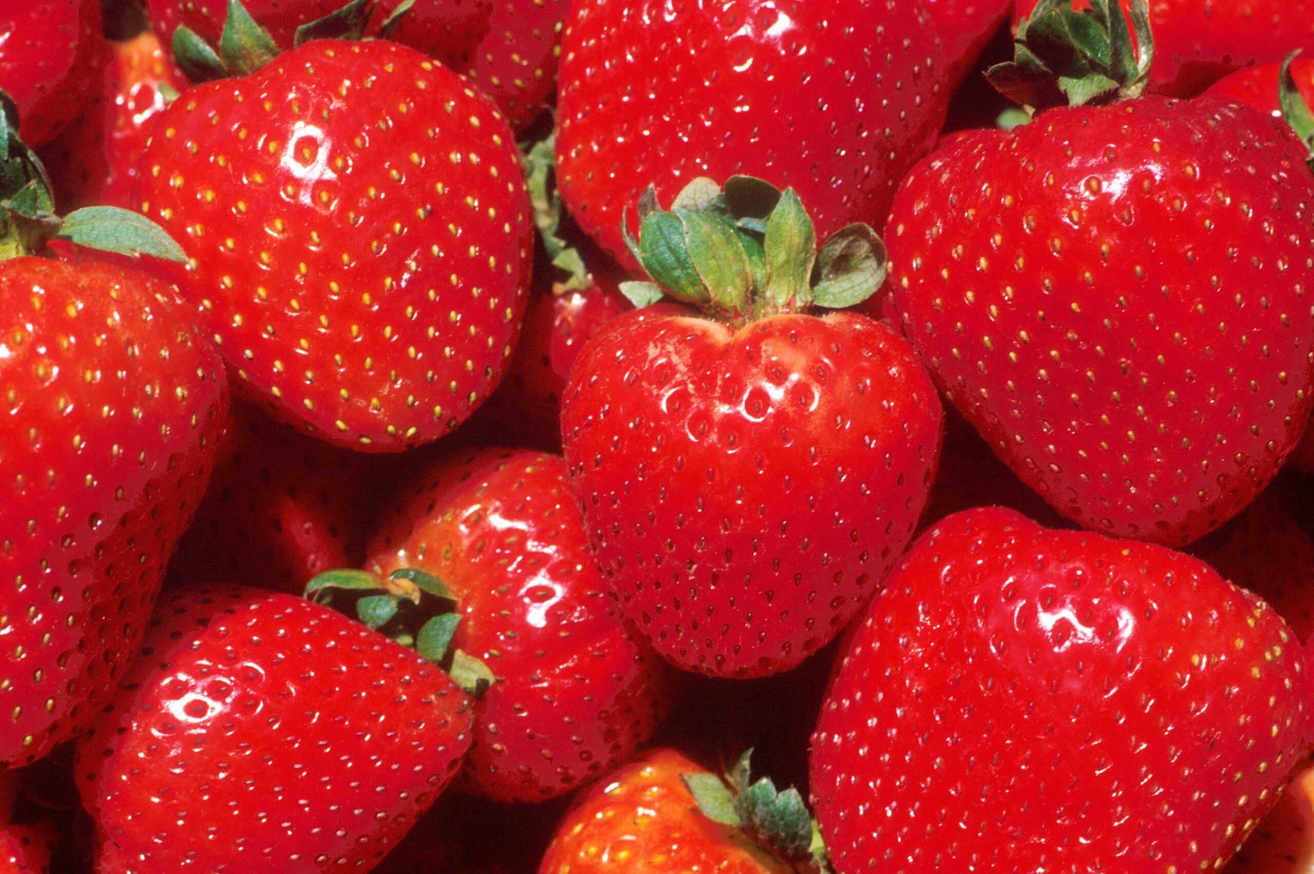 strawberries-5500937
