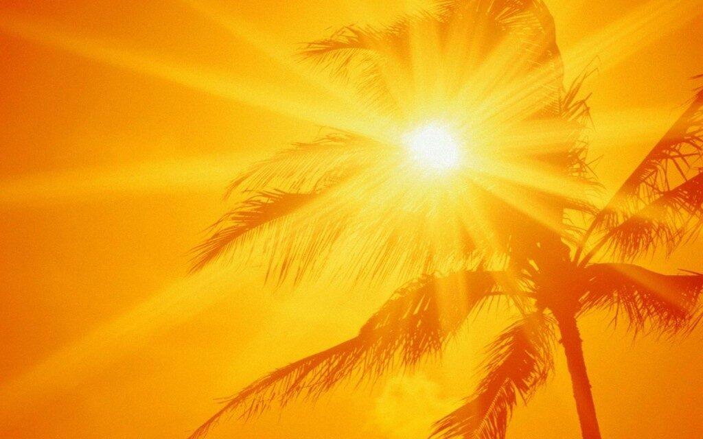ala_moana_beach_park_oahu_hawaii_70671-1920x1200-1024x640-9169142