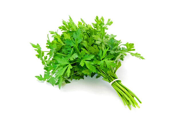 bouquet-of-parsley-new-9908183