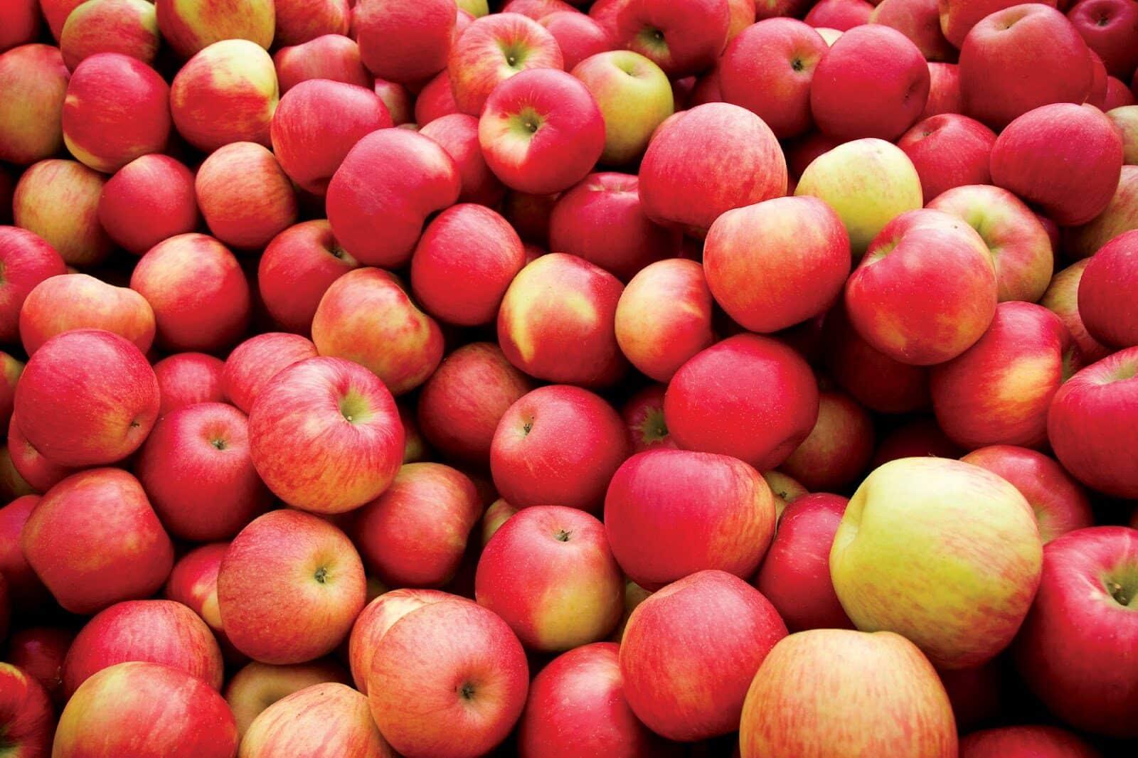 apples-2747060