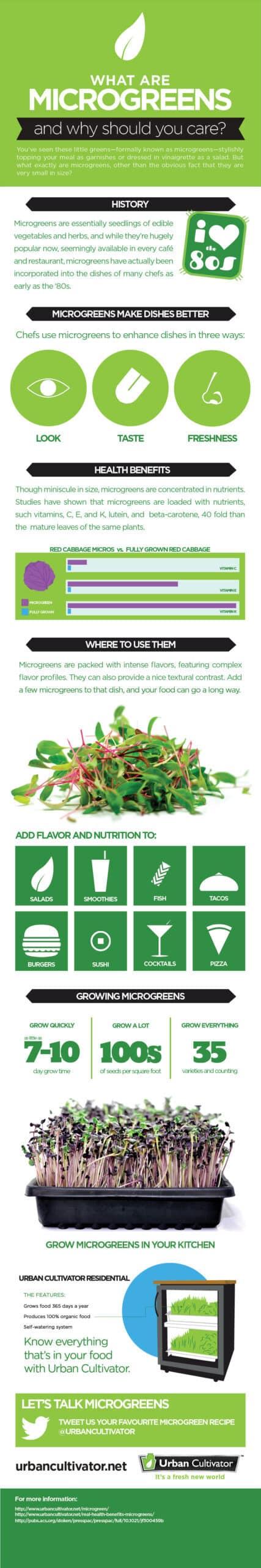 microgreens_infographic-8797948