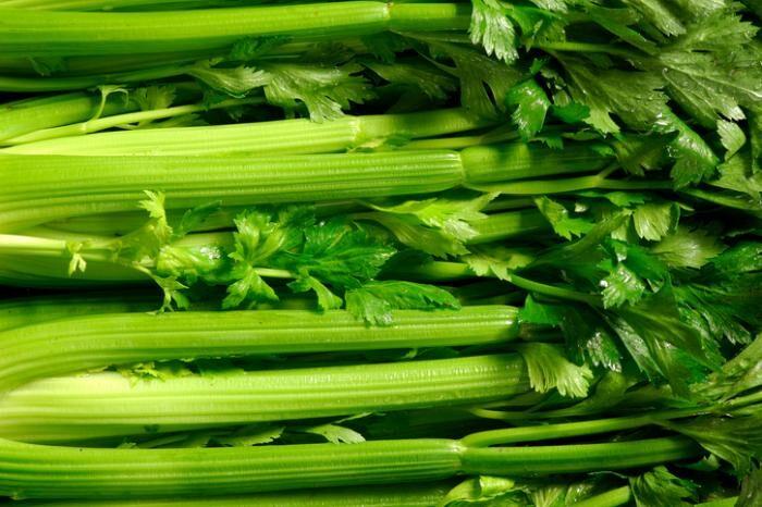 celery-8834316