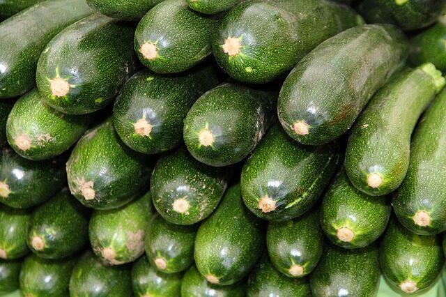 zucchini-3167484