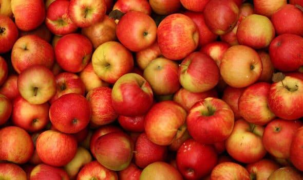 apple-links-587431-6383431
