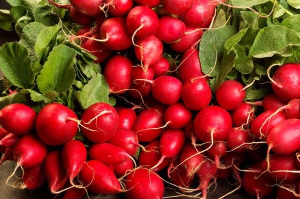 fresh-radishes-4244655