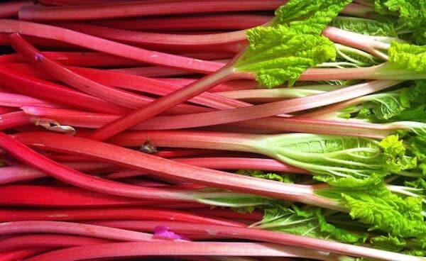 rhubarb-8767849