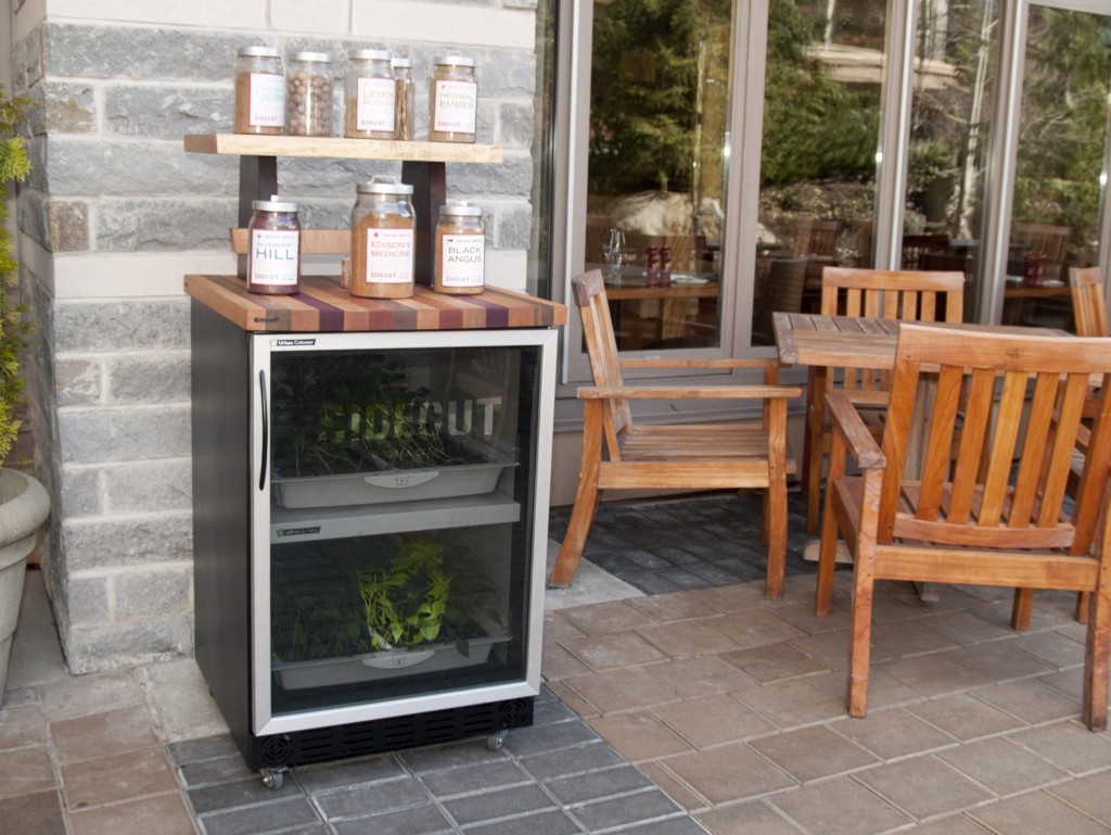 Urban Cultivator Home in Whistler BC